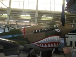Curtiss P-40 Front end by Jetster1