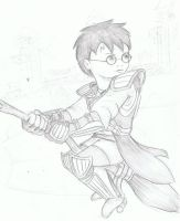 Harry Quidditch by MakingPicsSlowly