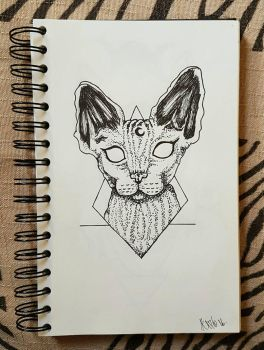 Sphynx Cat by Neigesh