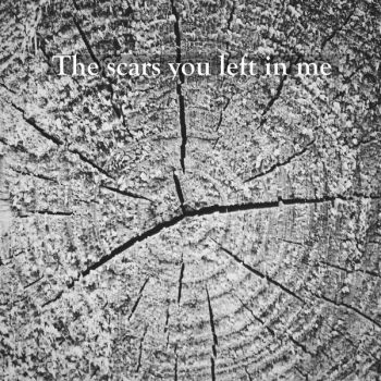 The scars you left in me by ShiNoKoe