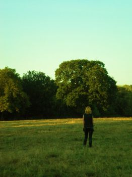 Alone in a field. by WammyTardz