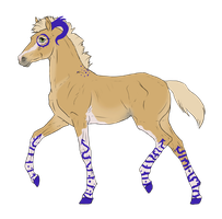 N3193 Padro Foal Design for theliondemon-kaimra by casinuba