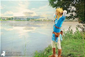 Link (Zelda: Breath Of The Wild) - Olympic Airways by Echolox