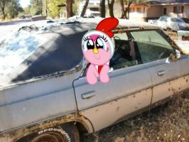 Pinkie's hanging in an old car by BoltBlazer