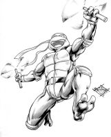 Mikey TMNT by MatiasSoto