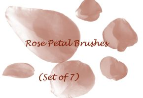 Rose Petal Brushes by SimplyBackgrounds