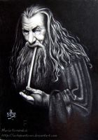 Gandalf by ochopanteras