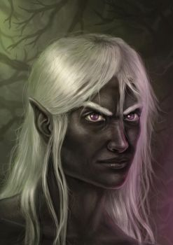 Drizzt Do'Urden by DaviTunes