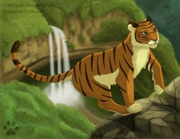 King of the Jungle by ClaireLyxa