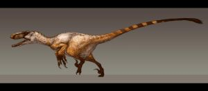 Utahraptor ostrommaysorum by Paleocolour