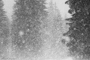 Abstract SnowStorm by alexandre-deschaumes