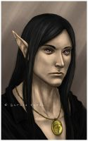 Commission: Elreth by SerenaVerdeArt