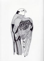 falcon abstract by redwolfgirl