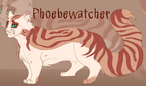[March 2017] Phoebewatcher by koiffee