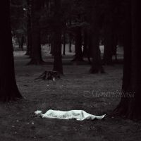 I need a place to be alone by Meravigiliosa