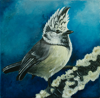 Crested Tit Painting by Adalgeuse