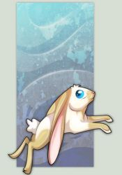 . Year Of The Rabbit . by Laseros