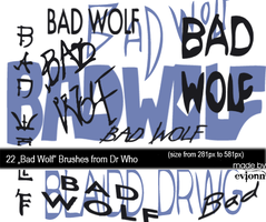 Bad Wolf Brushes by evionn