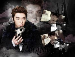 Super Junior Opera Donghae wallpaper by ForeverK-PoPFan