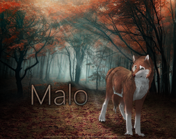 Malo by cowtracks