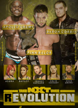 NXT TakeOver Revolution - Custom Poster by DGLProductions