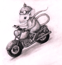 The Mouse and the Motorcycle by Coffeehouseartist