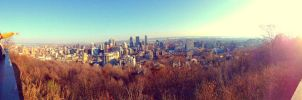 Look at that panorama! by lolnyny