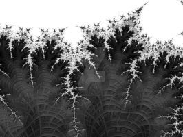 Fractal Ferns by rahulmukerji