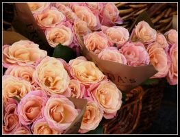 Pink Bouquet by kanes