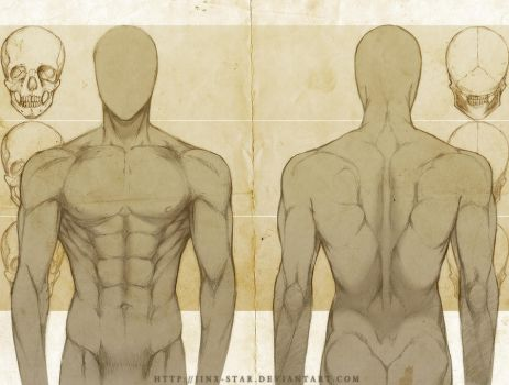 +MALE ANATOMY: FRONT + BACK STUDY+ by jinx-star