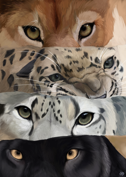 Eyes by CenturiesForGlory