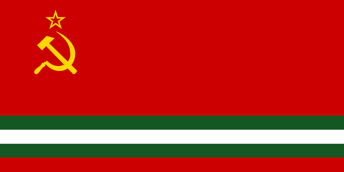 Flag For Pakistani SSR by someone1fy