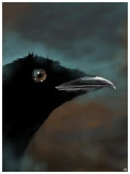 Long live the crows by robertas