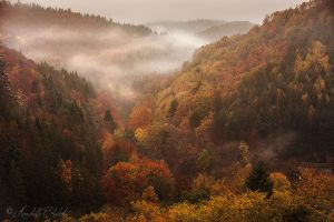 The valley with no name by Annabelle-Chabert