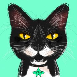 Stan the cat by hahatem