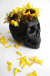 Skull as a Vase by Viera8