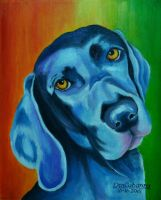 Multi Color Dog 2 by DonCabanza