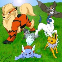 Pokemon team 2012 + surprise