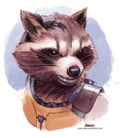 Rocket Raccoon by D-MAC