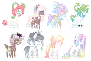 Adopt Batch  | Closed by halcyondrop