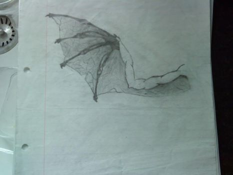 Dragon Wing - Concept. by deathgliger