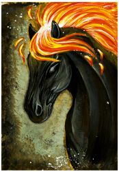 Jack the Fire Horse by 9-Silver-Shadow-2