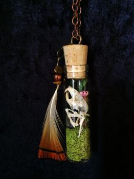 Field Mouse Bone Jar Pendant w/ Dried Plants by TheSilverCaribou