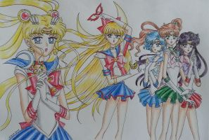 Sailor Moon : Moonlight gathering by curdledsauce