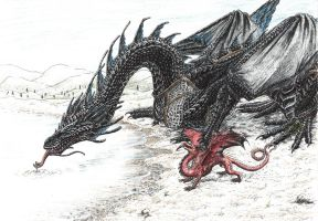 Temeraire by takma-rierah