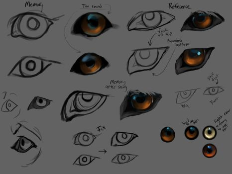 Wolf eyes practice by Chickenbusiness