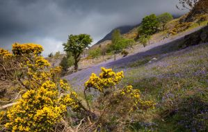 Rannerdale by scotto