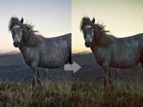 Photoshop Action 7 by w1zzy-resources