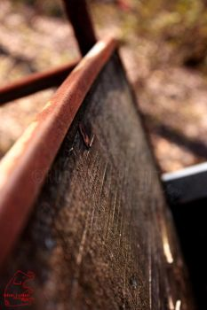 Macro Wood And Rust by CelestialK
