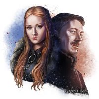Lady of Winterfell and Littlefinger by yagihikaru